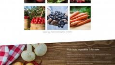 html5健康有机蔬菜果汁店网站模板