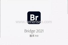 Bridge 2021安装教程中文破解版,Br完整版免费下载使用